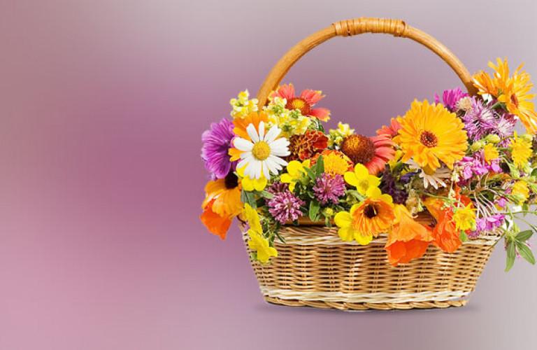 Flowers Lahore