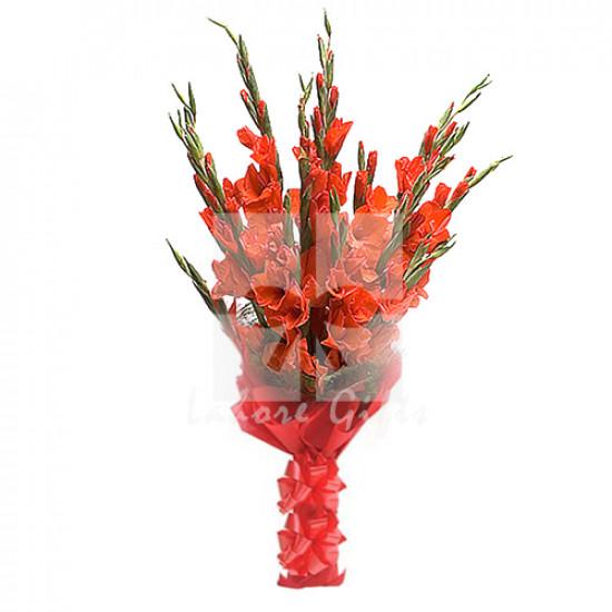 12 Gladiolus Bouquet